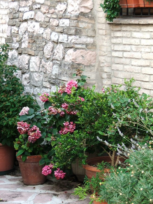 assisi-21-july-2013-055