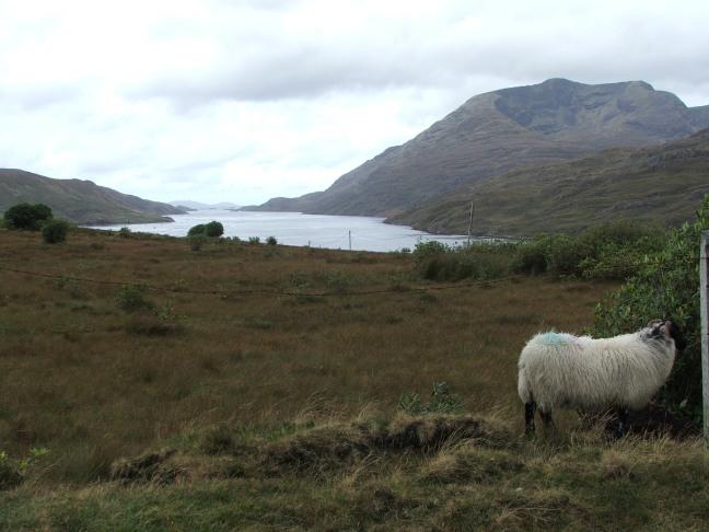 ireland-september-2011-2-403